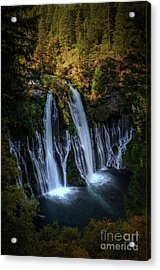 Acrylic Print featuring the photograph Burney Falls by Kelly Wade