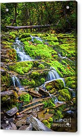Acrylic Print featuring the photograph Cascading Waterfall by Elena Elisseeva