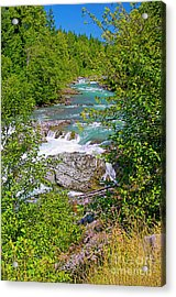 Acrylic Print featuring the photograph Cheakamus River by Sharon Talson