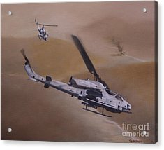 Close Air Support Acrylic Print by Stephen Roberson