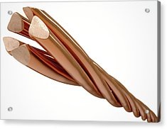 Copper Wire Strands Acrylic Print by Allan Swart
