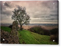 Countryside Acrylic Print by Martin Newman