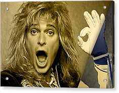 David Lee Roth Collection Acrylic Print by Marvin Blaine