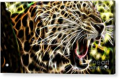 Electric Leopard Wall Art Collection Acrylic Print