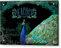 Elegant Peacock W Vintage Scrolls  Acrylic Print by Audrey Jeanne Roberts