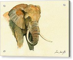 Elephant Painting           Acrylic Print