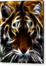 Eye Of The Tiger Acrylic Print by Wingsdomain Art and Photography