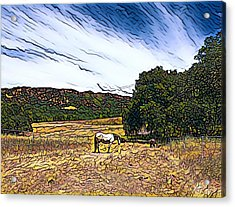 Fat Camp Grazing Acrylic Print