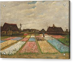 Flower Beds In Holland Acrylic Print by Vincent Van Gogh