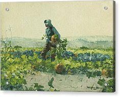 For To Be A Farmer's Boy Acrylic Print