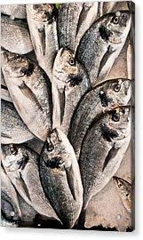 Fresh Fish Acrylic Print