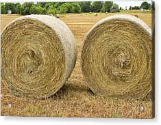 2 Freshly Baled Round Hay Bales Acrylic Print by James BO  Insogna