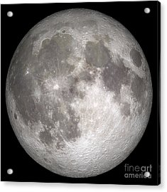 Full Moon Acrylic Print by Stocktrek Images