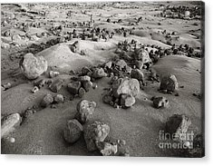 Garden Of The Gods Acrylic Print by Ron Dahlquist - Printscapes