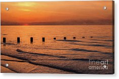 Acrylic Print featuring the photograph Golden Sunset by Adrian Evans