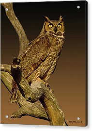 Great Horned Owl Acrylic Print by Larry Linton