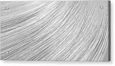 Hair Blowing Closeup Acrylic Print by Allan Swart