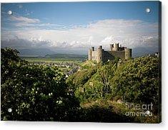 Harlech Castle, Snowdonia, Gwynedd, North Wales, Uk Acrylic Print