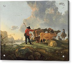 Herdsmen Tending Cattle Acrylic Print