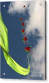High Hopes Acrylic Print by Angel Ciesniarska