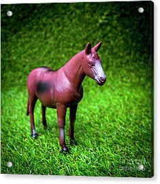 Horse Figurine Acrylic Print