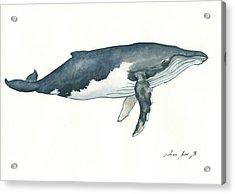 Humpback Whale Acrylic Print by Juan Bosco