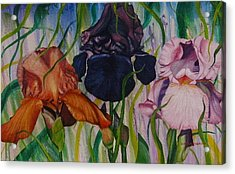 I Thought Tulips Acrylic Print by Shahid Muqaddim