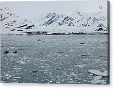 Acrylic Print featuring the photograph Icy Wonderland by Brandy Little