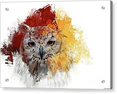 Acrylic Print featuring the photograph Indian Eagle-owl by Eva Lechner
