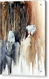 Its Not That Far Acrylic Print by Lynne Parker