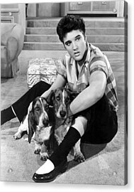 Jailhouse Rock, Elvis Presley, 1957 Acrylic Print by Everett