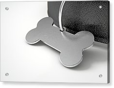 Leather Collar With Tag Acrylic Print