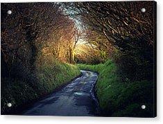 Light And Shadows Acrylic Print by Svetlana Sewell