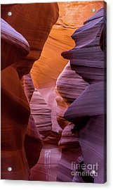 Lower Antelope Canyon Acrylic Print by Craig Shaknis