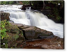 Lower Tahquamenon Falls Area Acrylic Print
