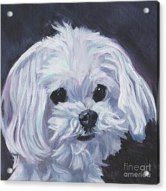 Acrylic Print featuring the painting Maltese by Lee Ann Shepard