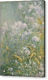Meadow Flowers Acrylic Print by John Henry