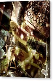 Acrylic Print featuring the digital art Medils Art by Danica Radman