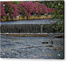 Mill River Park Acrylic Print