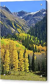 Acrylic Print featuring the photograph Million Dollar Highway  by Ray Mathis