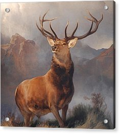 Monarch Of The Glen Acrylic Print by MotionAge Designs