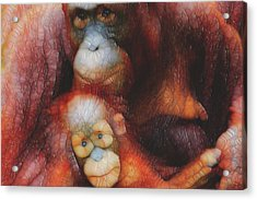 Mother And Child Acrylic Print by Jack Zulli