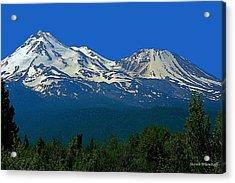 Mt. Shasta Acrylic Print by Steve Warnstaff