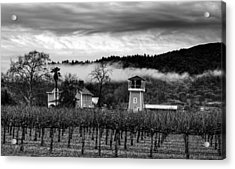 Napa Valley Vineyard On A Cloudy Day Acrylic Print by Mountain Dreams