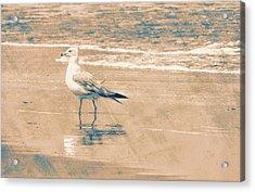 Ocean Breeze Walk Acrylic Print by JAMART Photography
