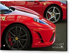 2 Of A Kind Acrylic Print by Dennis Hedberg