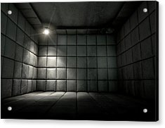 Padded Cell Dirty Spotlight Acrylic Print by Allan Swart