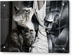 Photography Acrylic Print by Jayde Rowley