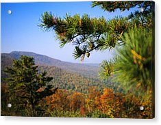 Pine Tree And Forested Ridges Acrylic Print by Raymond Gehman