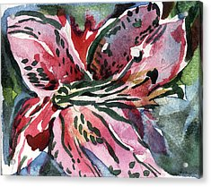 Pink Day Lily Acrylic Print by Mindy Newman